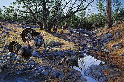 "Jim Kasper Limited Edition Print:""Western Ritual-Turkeys """