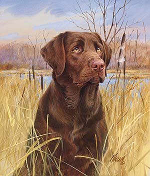 "Jim Killen Open Edition Print:""That's My Dog - Chocolate Lab """