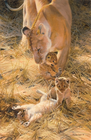 "John Seerey – Lester Limited Edition Print:""Marsh Lions-A New Generation"""
