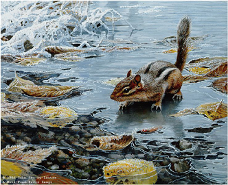 "John Seerey – Lester Limited Edition Print:""Treading Thin Ice-Chipmunk"""