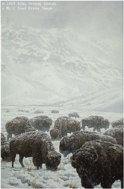 "John Seerey – Lester Limited Edition Print:""Winter Grazing - Bison"""