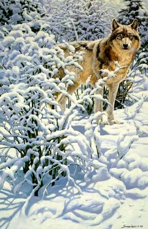 "John Seerey-Lester Limited Edition Print: ""Winter Spirit- Gray Wolf"""