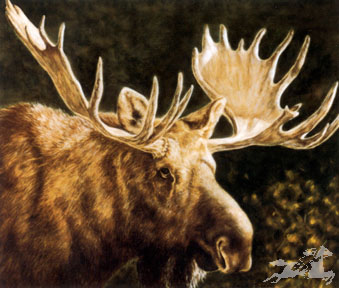 "Judi Rideout Moyers Limited Edition Print:""Alaskan Monarch"""