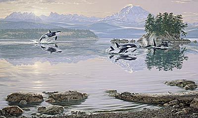 """Lee Kromschroeder Limited Edition Print:"""" Dawn's Call-Orcas """""""