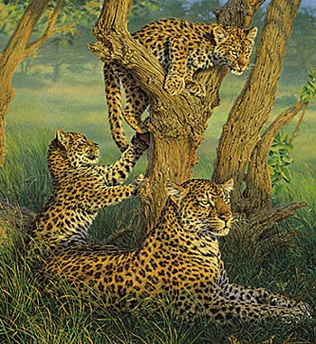 """Lee Kromschroeder Limited Edition Print: """"Family Outing -Leopards"""""""