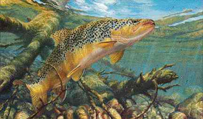 "Mark Susinno Handsigned and Numbered Limited Edition AP Print: ""Matching the Hatch-Brown Trout"""
