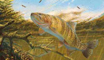 "Mark Susinno Handsigned and Numbered Limited Edition Artist Proof Print: ""Cutthroat Trout"""