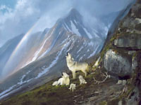 "Michael Coleman Handsigned & Numbered Giclee Limited Edition Print:""Answering The Call-Timberwolves"""