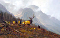 "Michael Coleman Handsigned & Numbered Giclee Limited Edition Print:""In The Bookcliffs-Elk"""