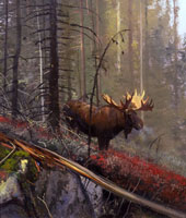 "Michael Coleman Handsigned & Numbered Giclee Limited Edition Print:""In The Timber-Bull Moose"""