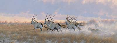 "Michael Sieve  Hand Signed and Numbered Limited Edition Canvas Giclee:""Teamwork-Gemsbok """
