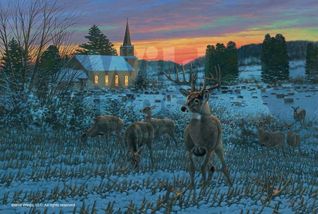 "Michael Sieve Handsigned and Numbered Limited Edition:""The Stone Church Buck"""