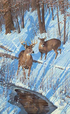 "Michael Sieve Handsigned and Numbered Limited Edition:""Shadows of Bowhunting-Whitetail Deer"""