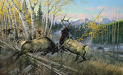 "Michael Sieve Limited Edition Print: ""Battling Bulls: Elk"""