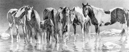 "Nancy Davidson Artist Hand Signed Open Edition Print: ""The Watering Hole """