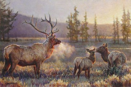 "Nancy Glazier Handsigned and Numbered Limited Edition Print: ""Morning (Elk)"""