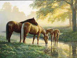 "Persis C. Weirs Limited Edition Print:""Spring Morning-Horses"""