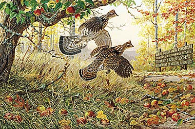 "Persis C. Weirs Signature Edition Print:""Fruits Of Your Labor-Ruffed Grouse"""