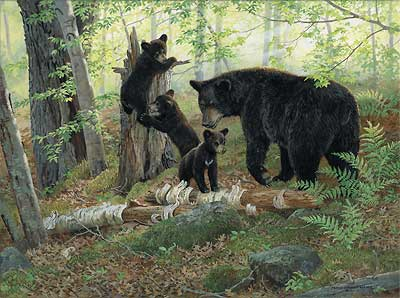 """Persis Clayton Weirs Handsigned & Numbered Limited Edition Print:""""Playtime-Black Bears"""""""