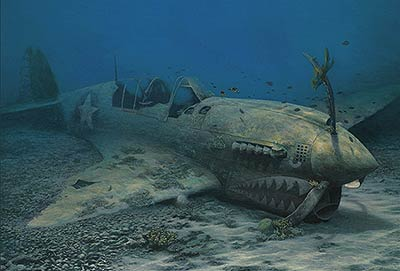 "Randall Scott Limited Edition Print:""Warhawk Reef-P-40N"""