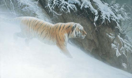 "Robert Bateman Hand Signed and Numbered Limited Edition Print on Paper:""Momentum - Siberian Tiger"""