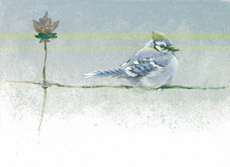 "Robert Bateman Handsigned and Numbered Limted Edition Print:""Winter Blue - Blue Jay """