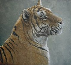 "Robert Bateman Handsigned & Numbered Limited Edition:""First Alert"""