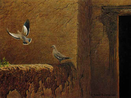 """Robert Bateman Limited Edition Paper Print:""""Old Adobe - White Winged Doves"""""""