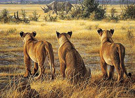 "Robert Bateman Limited Edition Paper Print:""Passing Fancy-Lion Cubs And Rhino"""