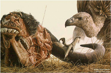 "Robert Bateman Limited Edition Print:""Vulture And Wildebeest"""