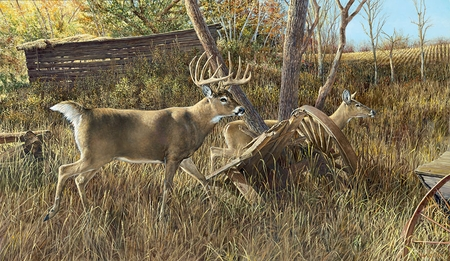 "Ron Van Gilder Hand Signed and Numbered Limited Edition Print: ""Old Homestead Buck"""