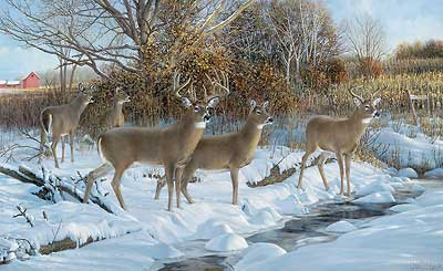 Ron van gilder handsigned and numbered limited edition for Deer scenery