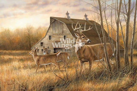 "Rosemary Millette Hand Signed and Numbered Limited Edition Print: ""Deserted Farmstead – Whitetail Deer """