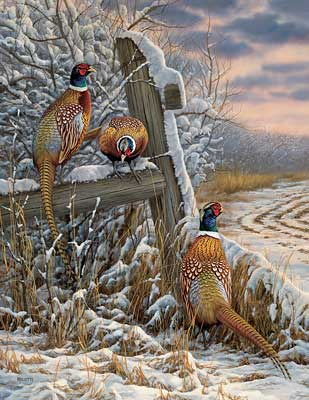 "Rosemary Millette Hand-signed and Numbered Limited Edition Artist Proof Print: ""Forgotten Fenceline-Pheasants"""