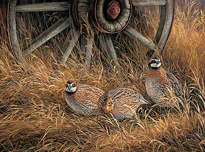 "Rosemary Millette Hand Signed Limited Edition Artist Proof Print:""Wagonwheel-Bobwhites Quail"""