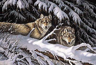 """Rosemary Millette Limited Edition Print: """"Black Timber- Wolves"""""""