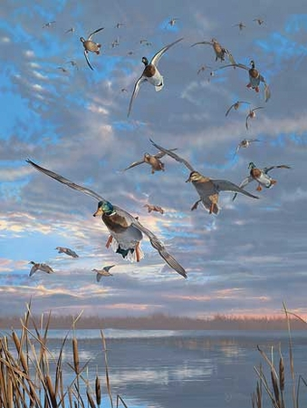 "Scot Storm Handsigned and Numbered Limited Edition Artist Proof Print: ""Closing Minutes-Mallards Artist Proof"""