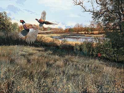 "Scot Storm Handsigned and Numbered Limited Edition Print:  ""Legacy-Pheasants"""