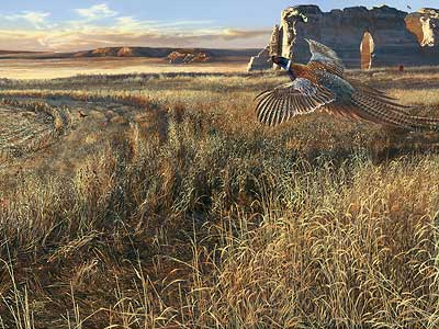 """Scot Storm Handsigned and Numbered Limited Edition Print: """"Legacy V-Prairie Heritage"""""""