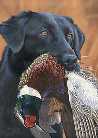 """Scot Storm Handsigned and Numbered Limited Edition Print: """"Prize Possession-Black Lab"""""""