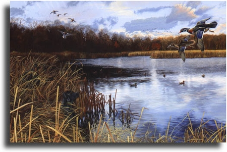 """Scot Storm Limited Edition Giclee on Paper:""""Sunset Arrivals"""""""