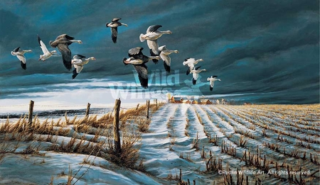 """Terry Redlin Handsigned and Numbered Limited Edition: """"Winter Snows"""""""