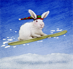 "Will Bullas Fine Art Open Edition Canvas :""Snow Bunny"""