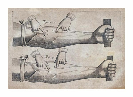 "William Harvey Fine Art Open Edition Giclée:""Discovery of the Circulation of Blood"""