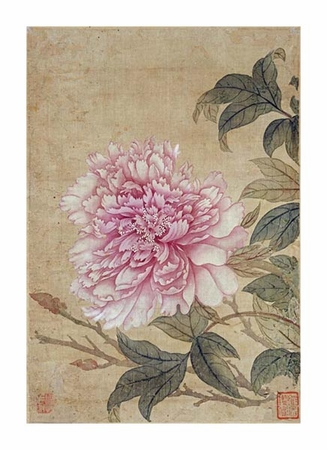 "Yun Shouping Fine Art Open Edition Giclée:""Peony"""
