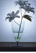 Michele De Lucchi Basequadra Vase, Metal Base, Transparent Green Glass