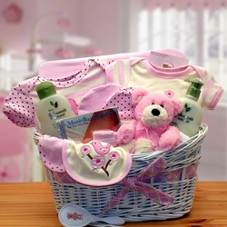 Deluxe Organic New Baby Girl Gift Basket