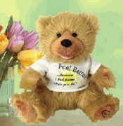 """Noah"" The Feel Better Bear"