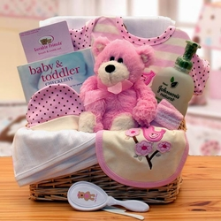 Organic New Baby Girl Basics Gift Basket