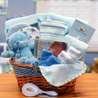 Simply The Baby Basics New Baby Boy Gift Basket